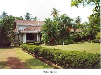 Palm Grove - In the late 1990s